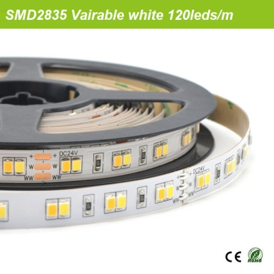 SMD2835 Tunable white strips