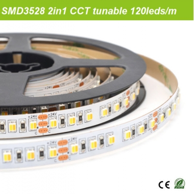 SMD3528 2 chips in one CCT strips