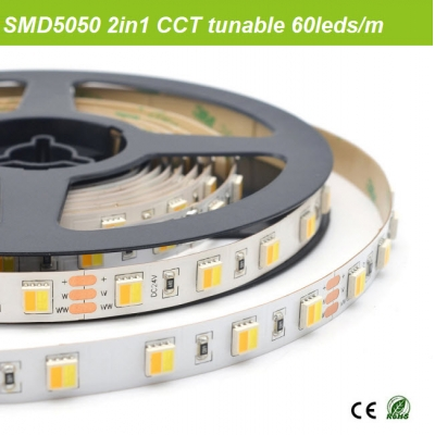 SMD5050 2chips in one tunable white