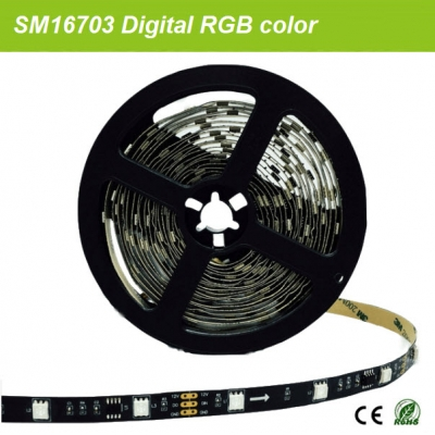 12V SM16703 led strip